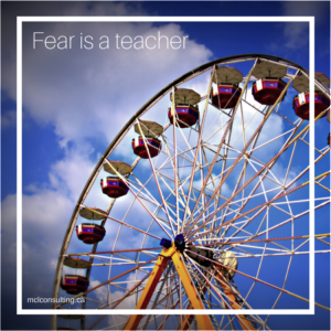 """Fear is a teacher"" post by MCLconsulting"